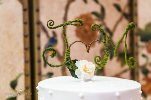 Detail of cake topper at wedding reception at Hilton Christiana - Wedding Photography by Danielle Vennard Photographer - In Pursuit of Moments Unrehearsed - daniellevennard.com