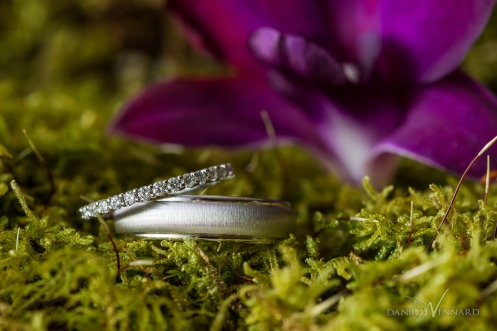 Detail of wedding bands in moss with purple orchid in background - the Hilton Christiana - Wedding Photography by Danielle Vennard Photographer - In Pursuit of Moments Unrehearsed - daniellevennard.com
