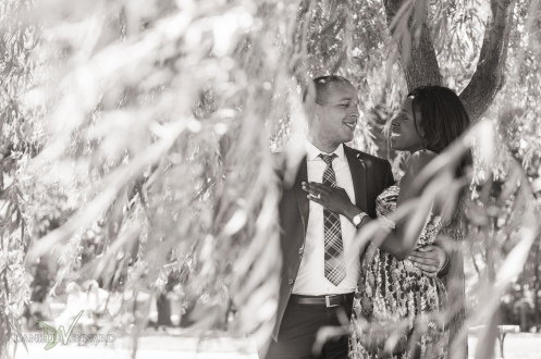 Engaged couple getting shade under the weeping willow trees - Boston Public Gardens - Boston, MA - Engagement Photography by Danielle Vennard Photographer - In Pursuit of Moments Unrehearsed - daniellevennard.com