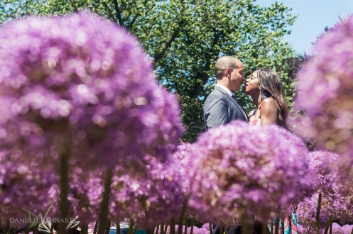 Engaged couple getting close in front of magenta flowers - Boston Public Gardens - Boston, MA - Engagement Photography by Danielle Vennard Photographer - In Pursuit of Moments Unrehearsed - daniellevennard.com